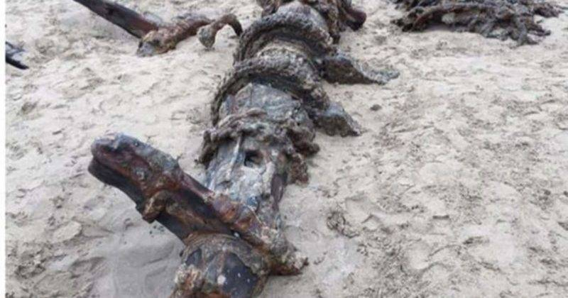 Загадочное кораблекрушение: призрачный корабль появляется вновь спустя 120 лет после исчезновения
