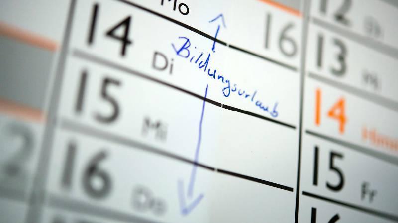 Отпуск в связи с обучением: какие права имеют сотрудники?