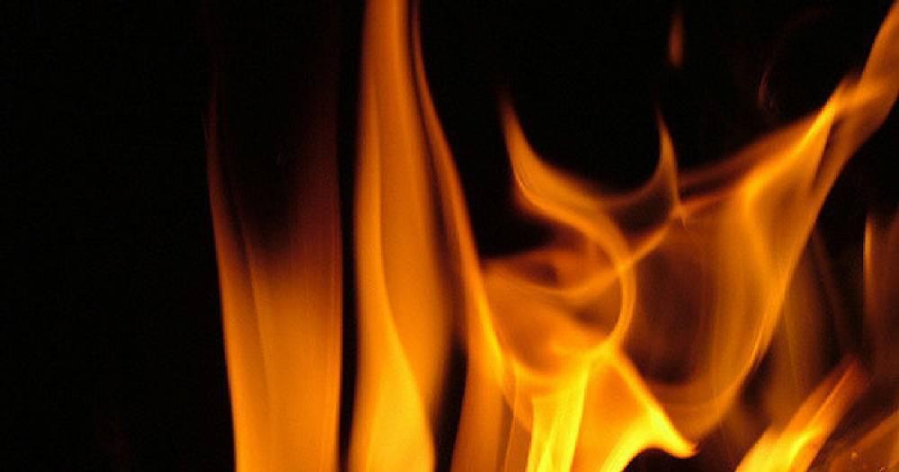Женщина и двое детей погибли при пожаре в Орловской области