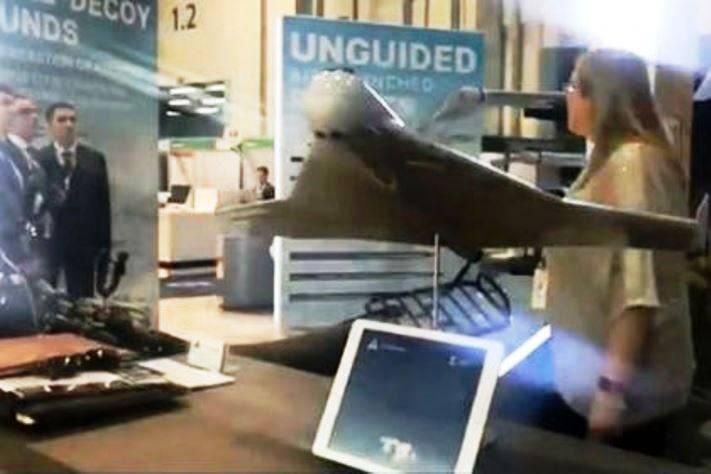 Концерн «Калашников» представил на IDEX-2019 самовзрывающийся БЛА