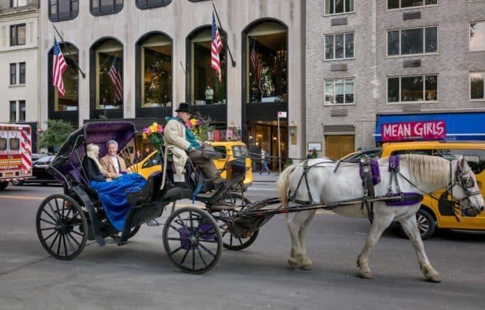 Нью-Йорк занял 34-е место в рейтинге городов США, где легче всего найти себе пару