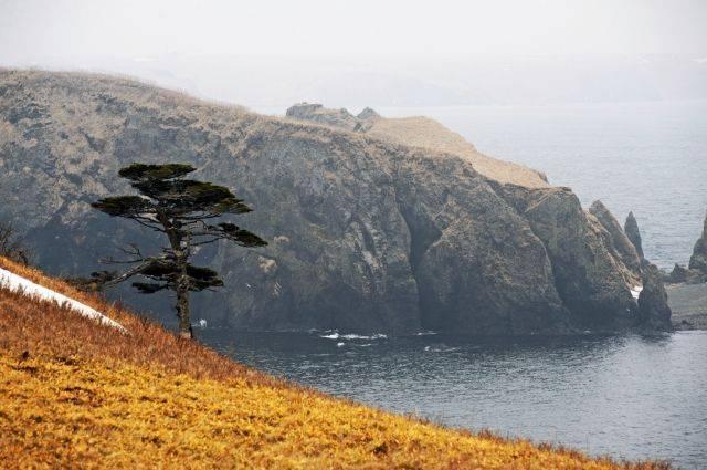 Японское издание считает Курильские острова идеальным местом для ракет США