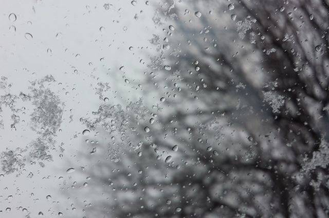 Москвичей ждет облачная погода со снегом в среду
