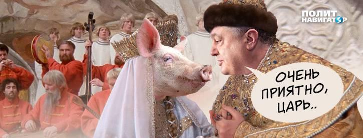 В Луцке полиция задержала свиней, встречавших Порошенко