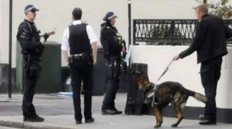 Вооруженные офицеры перекрыли район и ведут переговоры с мужчиной, угрожающим убийством жителям Аддискомбе в Лондоне