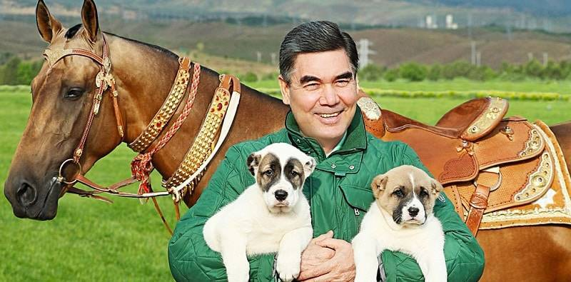 Президент Туркменистана напишет книгу об алабаях: фото и иллюстрации