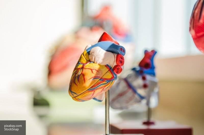 Кардиолог рассказал о полезных для сердца продуктах