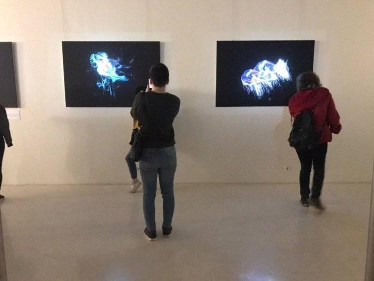 Более 21 тысячи человек поучаствовали в Ночи музеев в Подмосковье