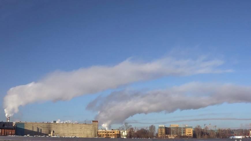 Загрязненный воздух вредит всем органам человеческого тела