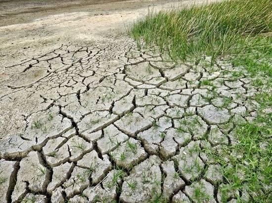 Ученые поспорили, что нас ждет: глобальное потепление или похолодание: фото и иллюстрации