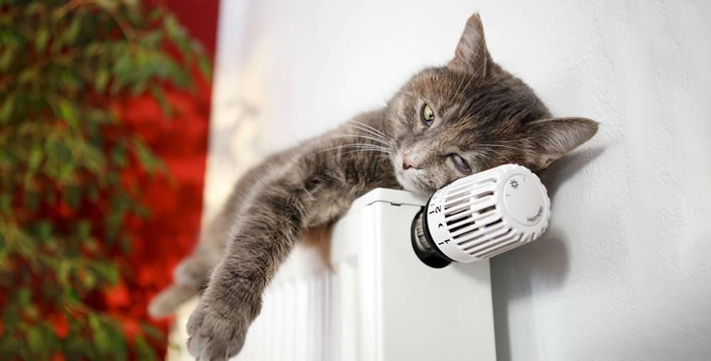 Отопление в Москве начнут отключать с 6 мая