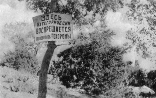 4 миллиона жертв или 7?.. Количество потерь от Голодомора: наука или идеология?: фото и иллюстрации