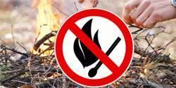 В шести районах Орловской области введен противопожарный режим: фото и иллюстрации