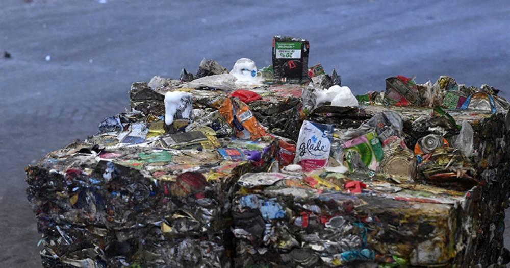 Москва определила срок перехода на раздельный сбор мусора: фото и иллюстрации