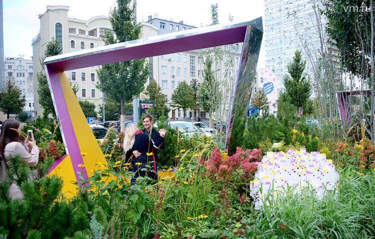 Около 6 миллионов однолетних цветов высадили в Москве: фото и иллюстрации