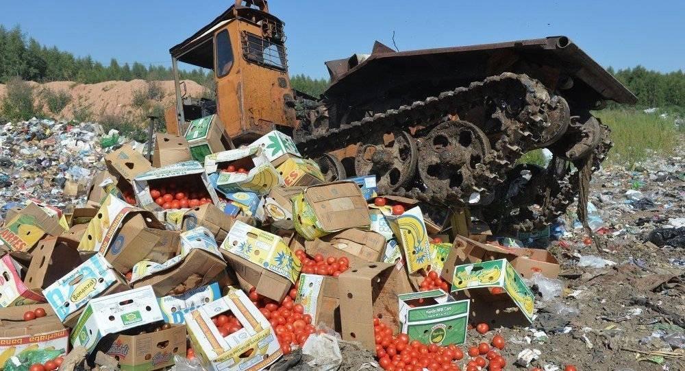 В правительстве решили не уничтожать санкционные продукты: фото и иллюстрации