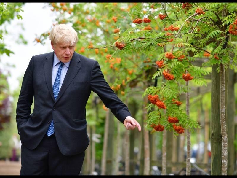 СМИ: Борис Джонсон хочет уволить Джереми Ханта