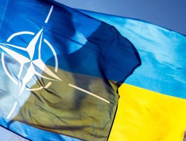 США считают, что Украина может претендовать на членство в НАТО: фото и иллюстрации
