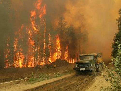 Минприроды хочет отнять у губернаторов право решать вопросы по лесным пожарам: фото и иллюстрации