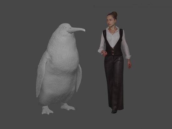 Останки гигантского пингвина обнаружили в Новой Зеландии: фото и иллюстрации