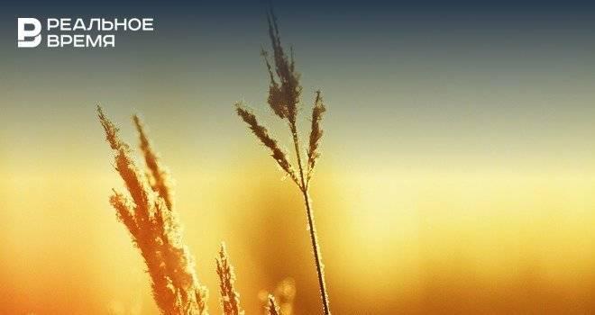 Гидрометцентр РФ прогнозирует потепление до +36 градусов в Поволжье: фото и иллюстрации