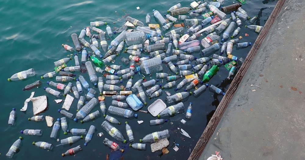 Вреда отпластика впитьевой воде необнаружено: фото и иллюстрации