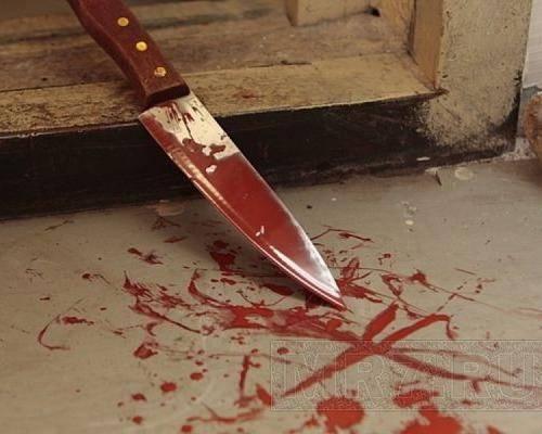 В Чеченской Республике 17-летняя девушка убила мать и сестру: фото и иллюстрации