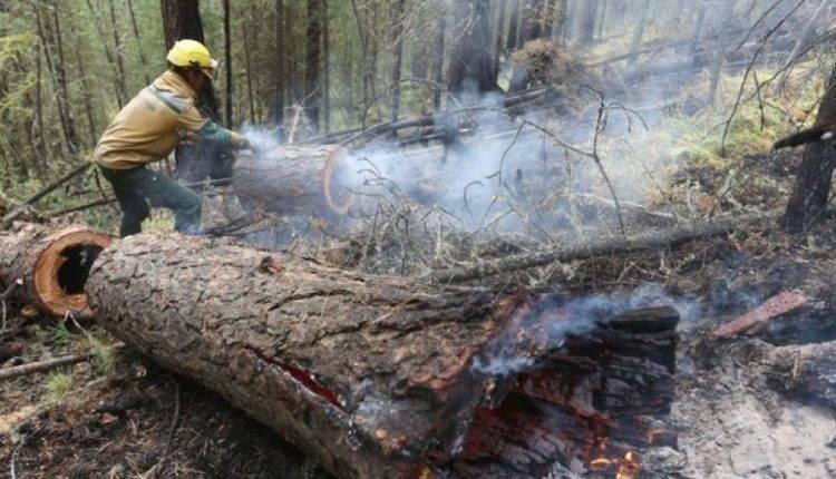 Площадь пожаров в России за сутки сократилась почти на 60 тыс. гектаров: фото и иллюстрации