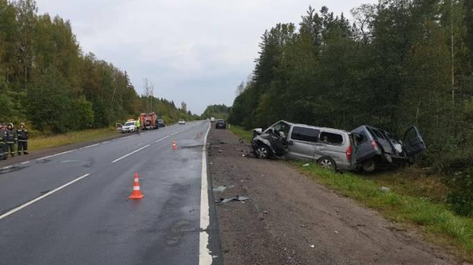 В Лужском районе Ленобласти при столкновении трех микроавтобусов погибли два человека: фото и иллюстрации
