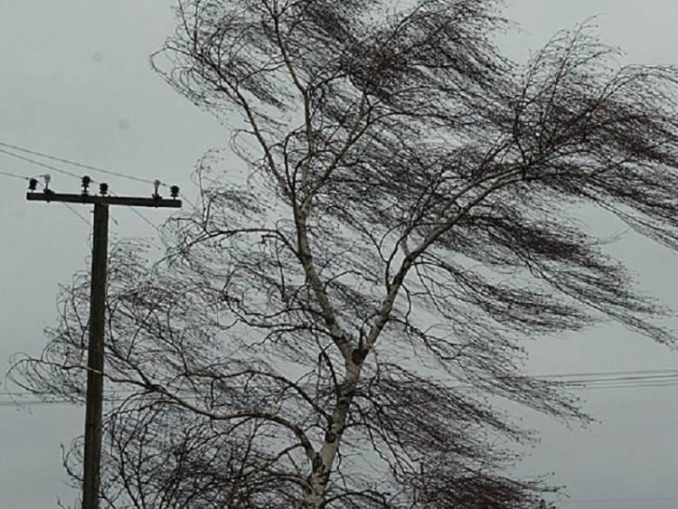 Штормовое предупреждение объявлено в Кемеровской области: фото и иллюстрации