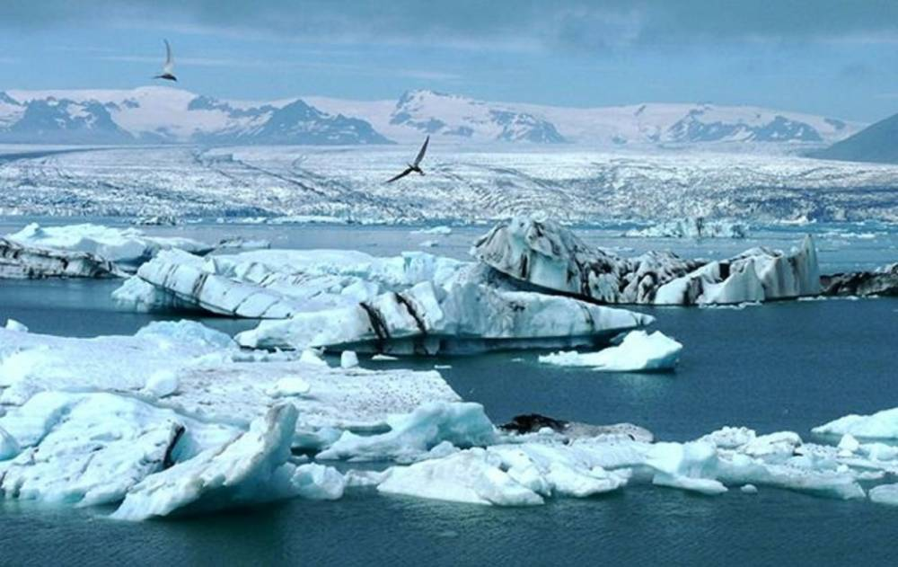 здороваюсь картины арктики фото глаз свидетельствует