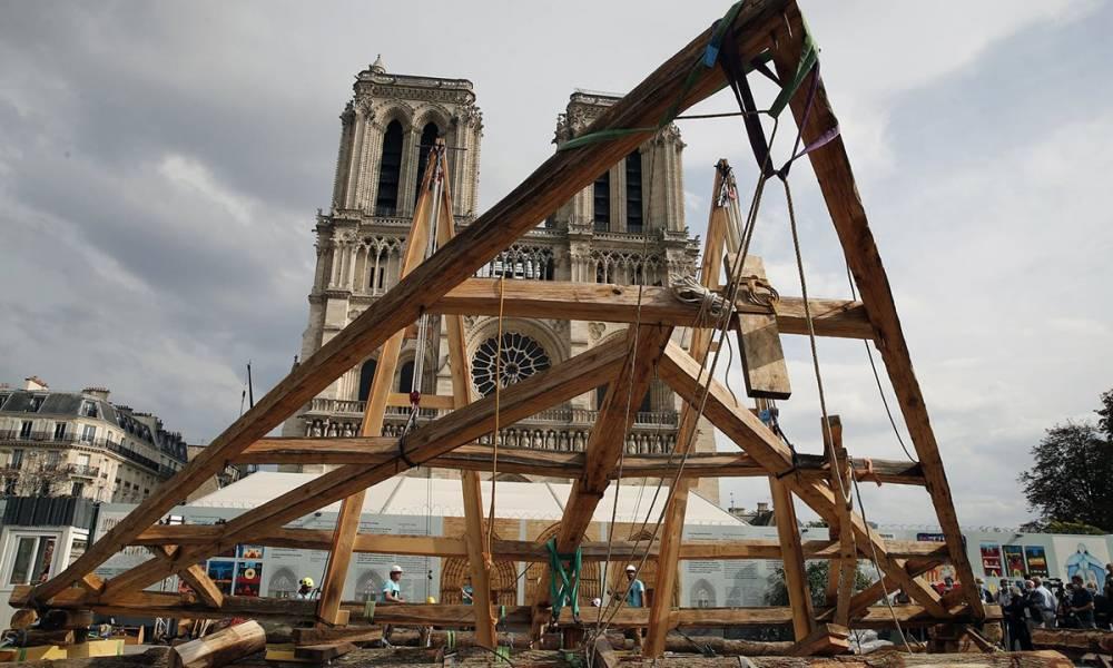 Срубят тысячу 100-летних дубов для шпиля: как будут реконструировать Нотр-Дам
