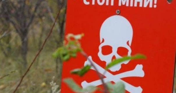 Двое пьяных боевиков подорвались на собственном минном поле, - разведка