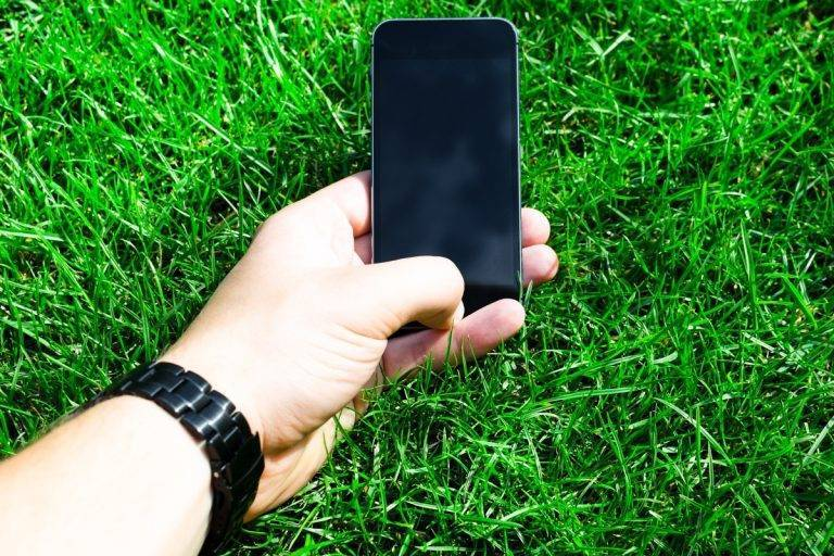 Тверские дачники перешли на мобильный интернет