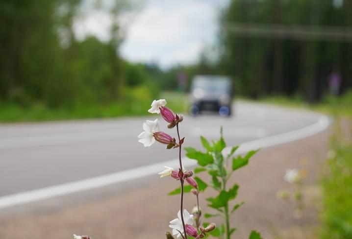 За год в Ленобласти отремонтируют более 100 километров региональных трасс