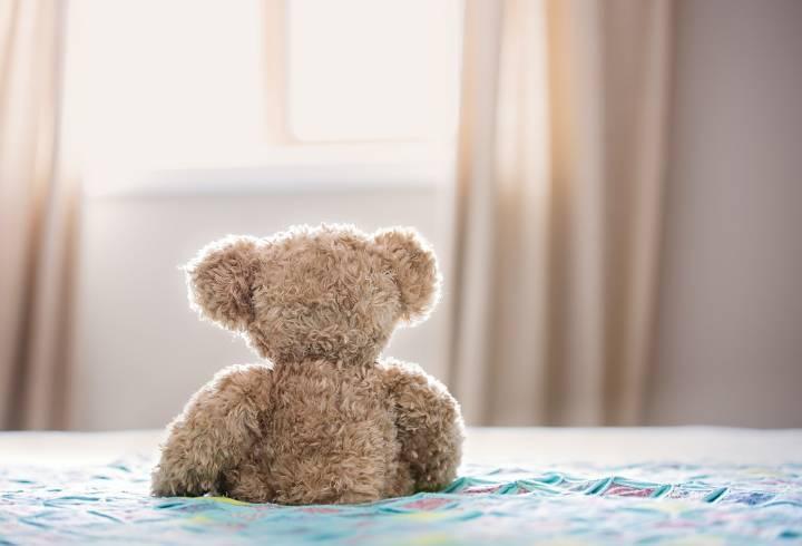 Прокуратура Выборга назвала вероятную причину пожара в СНТ «Дружба», где погиб ребенок