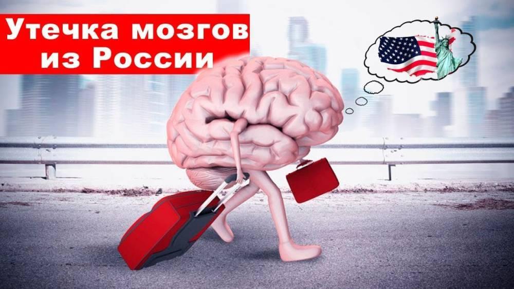 Утечка мозгов из России почти прекратилась, но всё же эмигрантов цитируют чаще