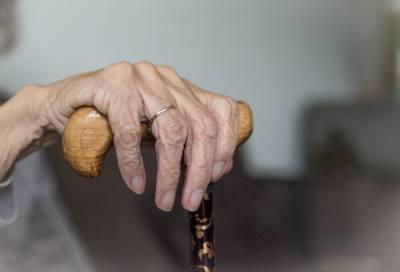 Мигрант избил 91-летнюю старушку за 350 рублей