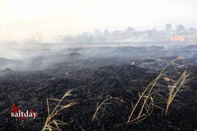 Фоторепортаж Олега Грачева с природного пожара в Соль-Илецке