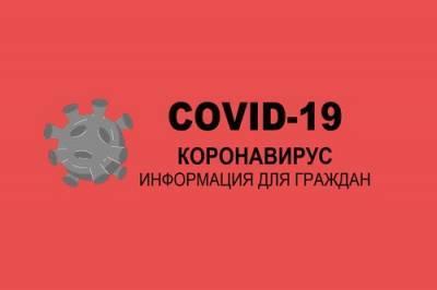 Коронавирус в Ростовской области: за сутки выявили 292 новых случая