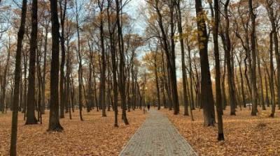 Еще трое: в Пензенской области назвали новых жертв коронавируса