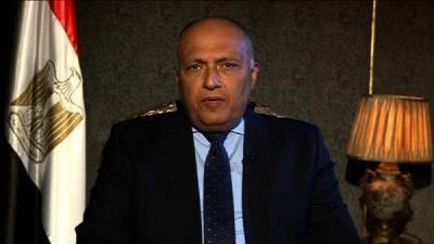 Египет категорически отверг действия Турции на севере Сирии
