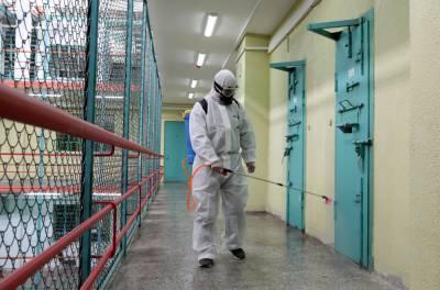 В Глданской тюрьме коронавирус подтвердился у двух подсудимых