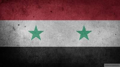 Россия провела гуманитарную акцию в пострадавшей от обстрелов Сирии