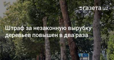 Штраф за незаконную вырубку деревьев повышен в два раза
