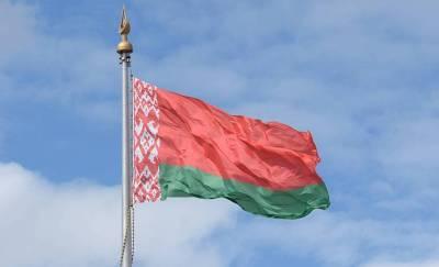 В Жлобине задержали парня, разорвавшего государственный флаг. Возбуждено уголовное дело
