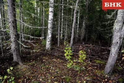 Спасатели оценили опасность радиоактивного контейнера в ухтинском лесу