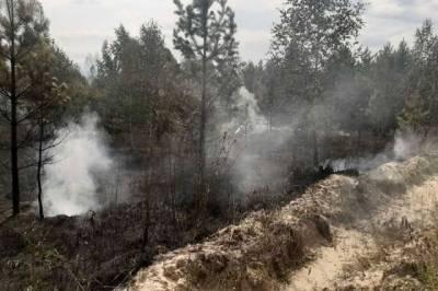 В Хабаровском крае горит тайга, но тушить её не собираются