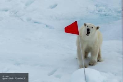 Обновленную госпрограмму развития Арктики представили в Минвостокразвития