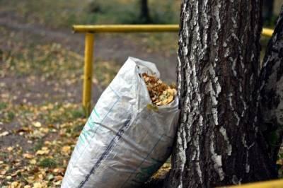 Около 100 000 человек наводили чистоту в Хабаровском крае